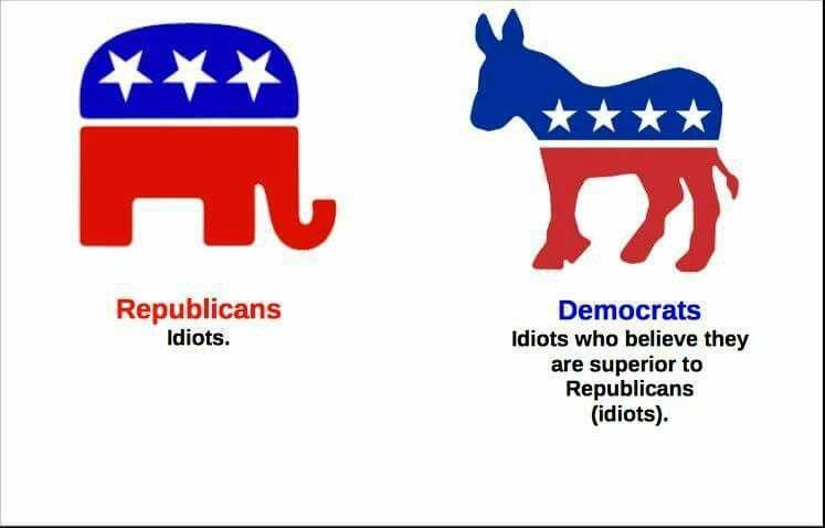 Dem/Rep Idiots