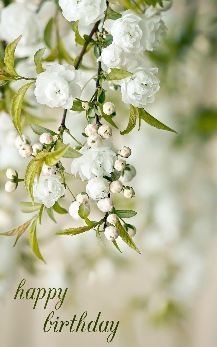 Happy Birthday Spring Flowers White Gardens Flower Garden