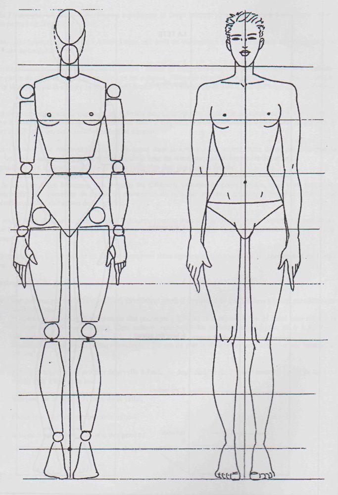 Mannequin bois et mannequin en chair   Ergonomics Home Ideas ...