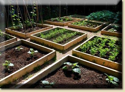 DIY Raised Garden Beds - DIY Garden Raised Garden Beds Pinterest
