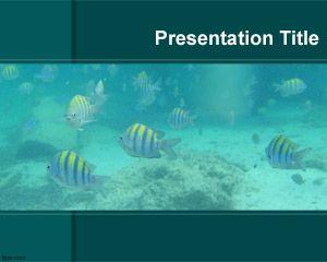 Aquarium powerpoint template download is a free aquarium image for aquarium powerpoint template download is a free aquarium image for power point presentations toneelgroepblik Images