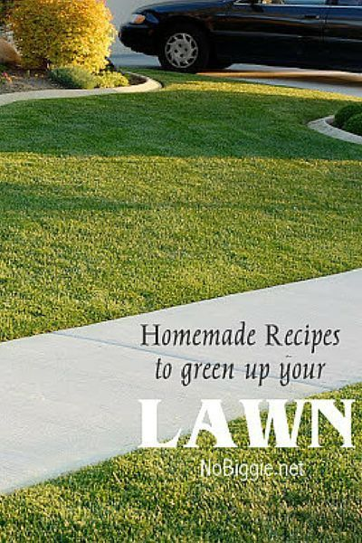 Why waste money on toxic (and not always reliable) lawn-care and pest-control products when you've got some of the best ingredients already at home?