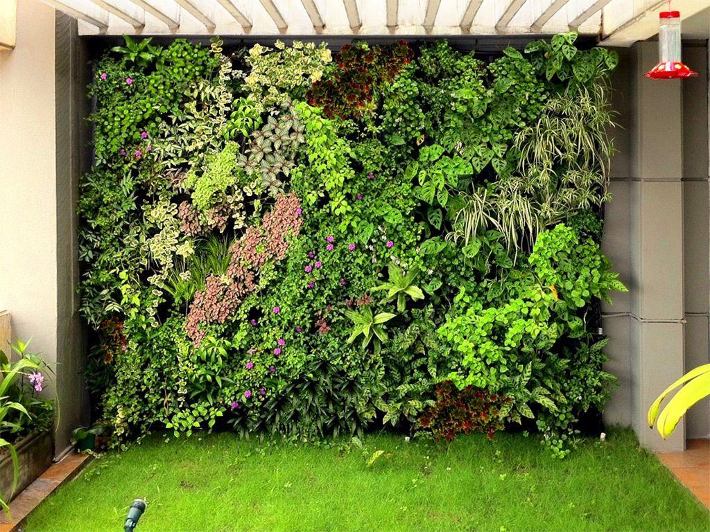 Conoces los muros verdes haz uno en casa conocidos for Muros verdes naturales