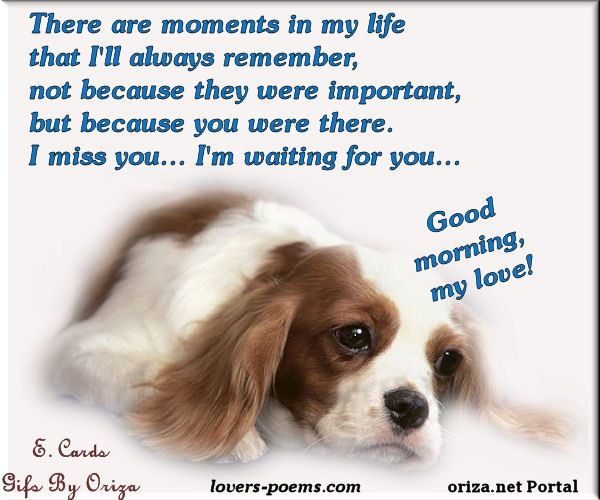 A Dogs Goodbye Poem Miss You Dog For My Angus Quotes Love