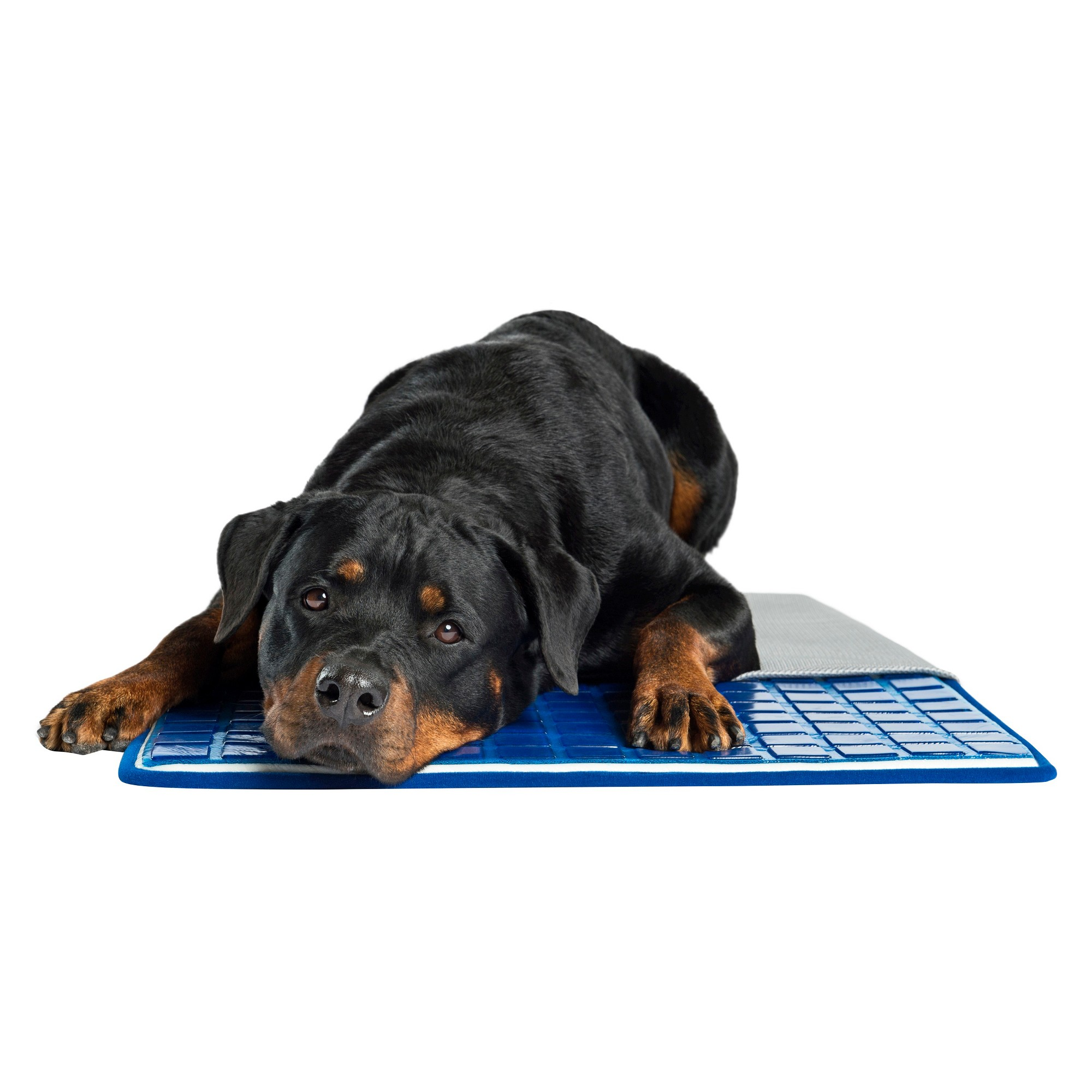 Pet Therapeutics TheraCool Gel Cell Cooling Pad Pet Bed