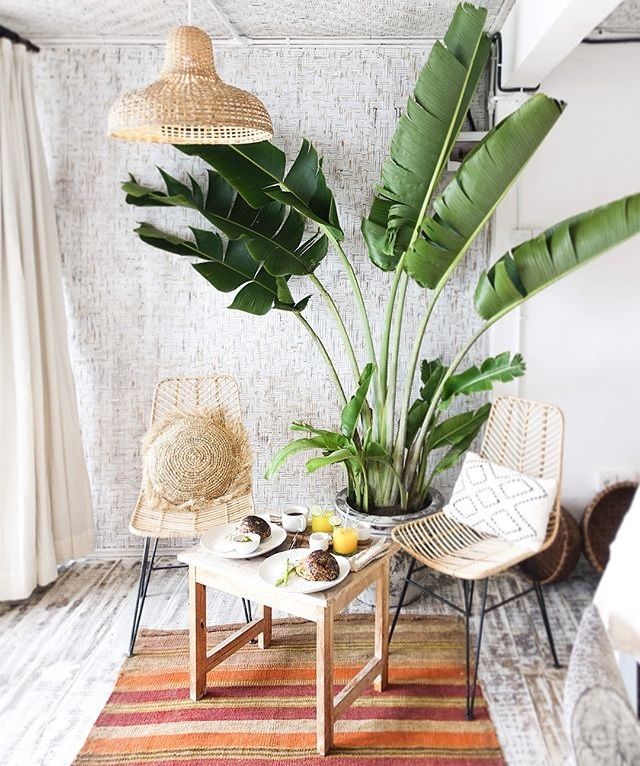 Pin by Anina Melissa Diergaardt on Living Room Room