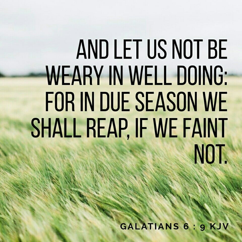 And let us not be weary in well doing: for in due season we shall reap, if we faint not. Galatians 6:9 KJV | Do better quotes, Done quotes, Kjv