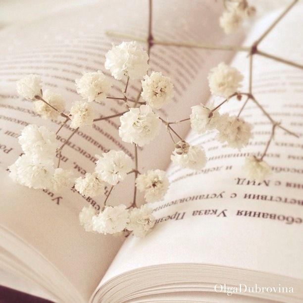 Libro en primavera