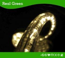 Led Rope Light Smd5050 Led Strip Rope Light 12v 24v 120v Real Green Lighting Company Limited Led Rope Lights Led Down Lights Flexible Led Strip Lights
