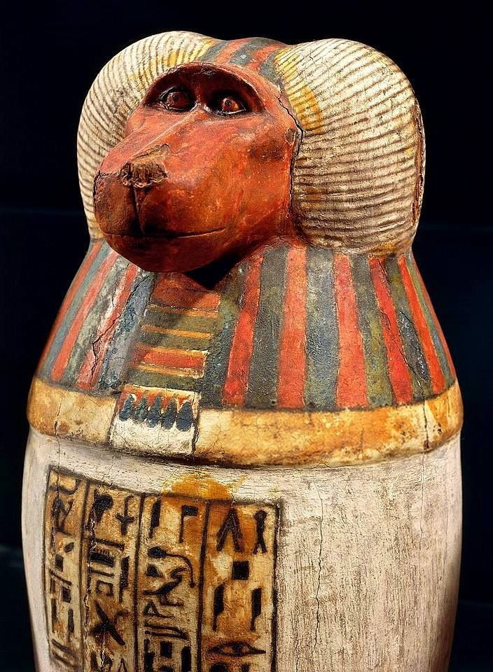 Pseudo Canopic Jar With The Baboon Head Of The God Hapi One Of The