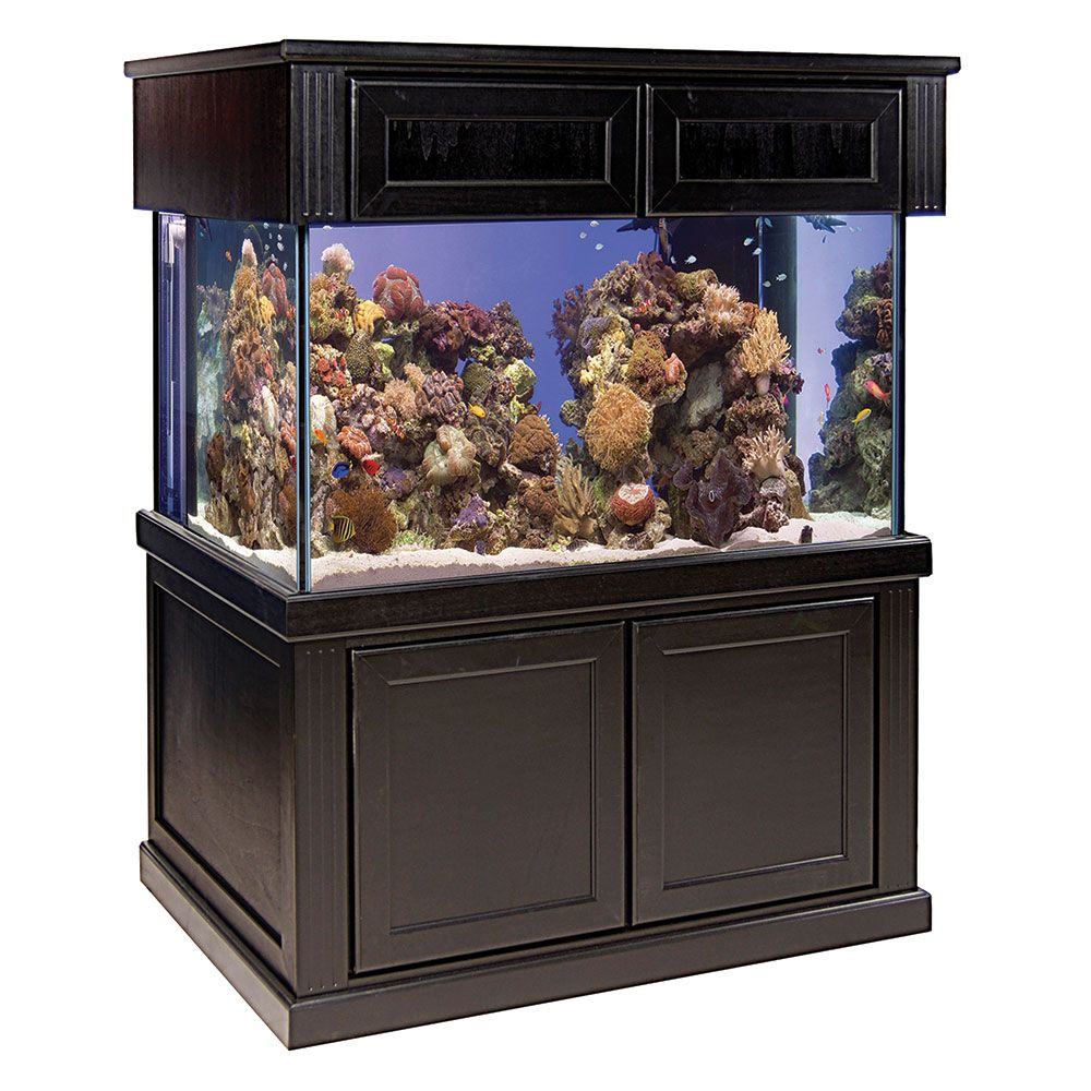 Perfecto 200 Gallon Aquarium System | Full Aquarium Set-Up | PetSolutions  sc 1 st  Pinterest & Perfecto 200 Gallon Aquarium System | Full Aquarium Set-Up ...
