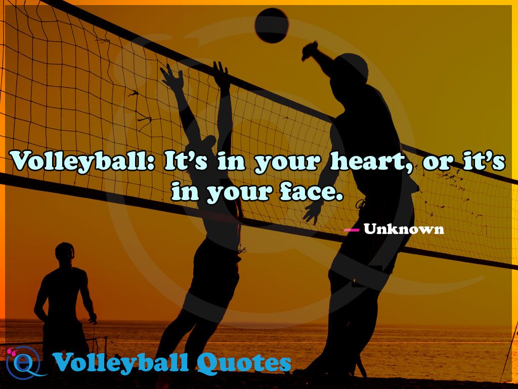 Volleyball It S In Your Heart Or It S In Your Face Volleyball Quotes 20 Volleyball Quotes Volleyball Quotes Funny Volleyball Inspiration