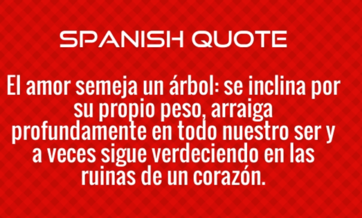 Happy Mothers Day In Spanish 2019 Spanish Mothers Day Happy Mother S Day Mothers Day Special
