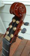 custom guitars 4