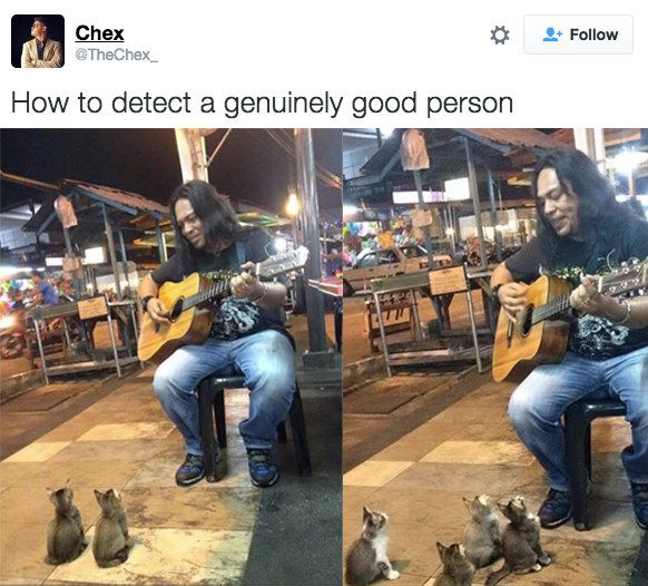 When it gave us some of the most beautiful images on the internet. | 28 Times Twitter Was A Goddamn Gift To The Internet