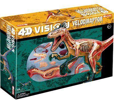 4D Vision Velociraptor Anatomy Modely Fame Master,http://smile.amazon.com/dp/B001YIQ0NS/ref=cm_sw_r_pi_dp_LyJltb1WGJB3SA9Y