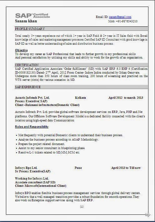 best resume advice beautiful excellent professional curriculum vitae    resume    cv format with