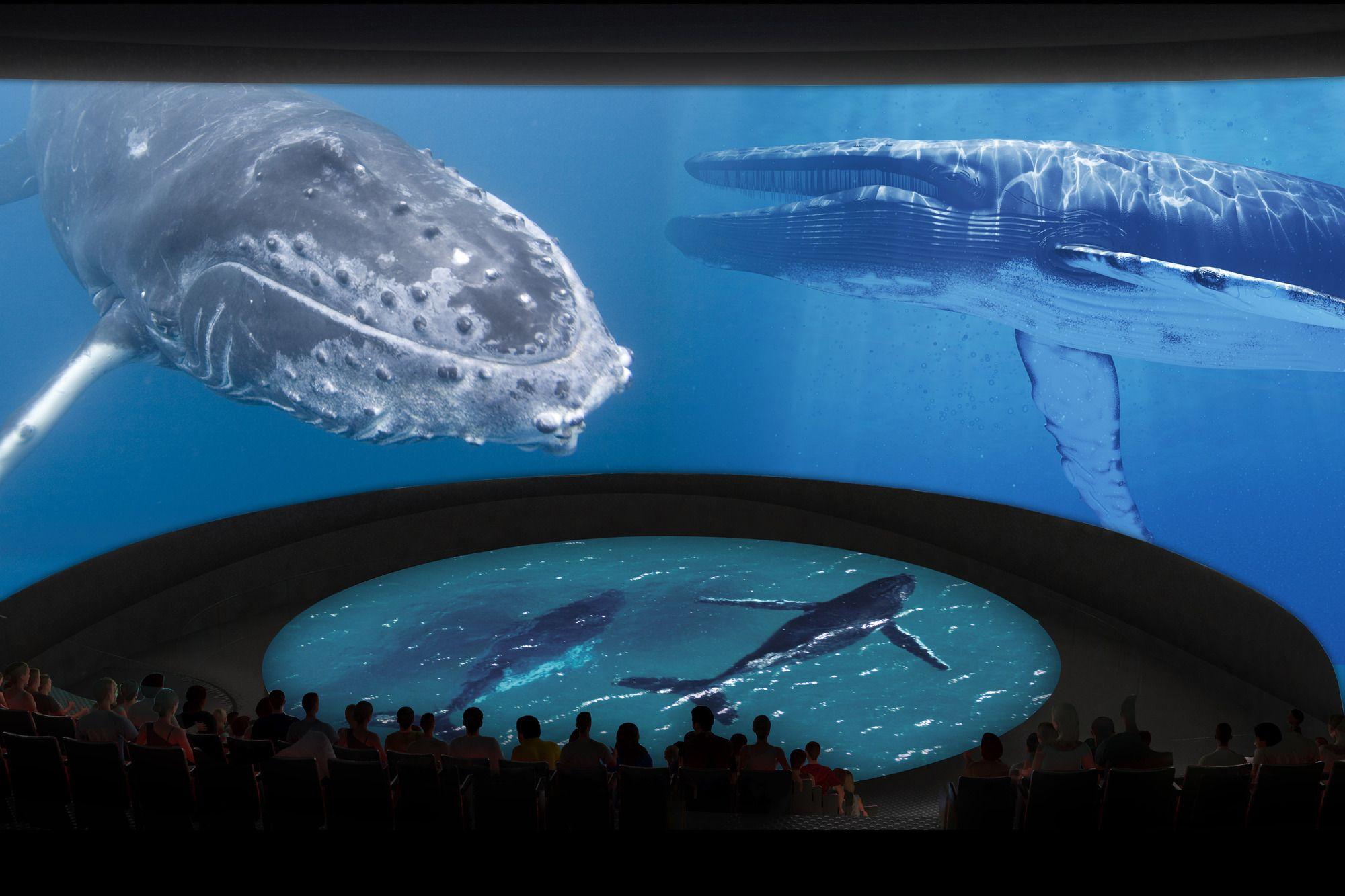 Gallery Of Aquarium Of The Pacific Reveals New Design For Major Expansion 10 Zoo Design Long Beach Aquarium Aquarium