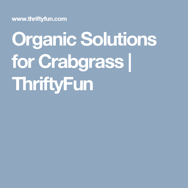 Organic Solutions for Crabgrass | ThriftyFun