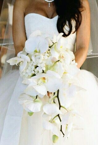 Glamorous Cascading Bridal Bouquet Which Includes White