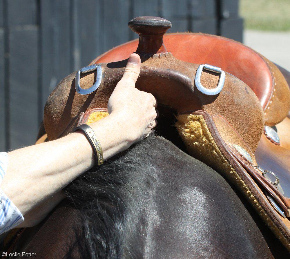 how to measure a saddle tree