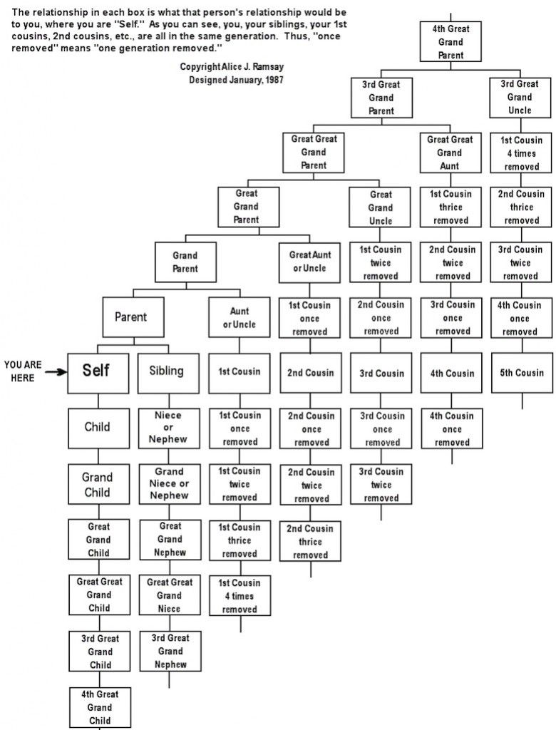 Here S A Handy Chart Explaining Confusing Family Connections And How To Keep From Killing Each Other