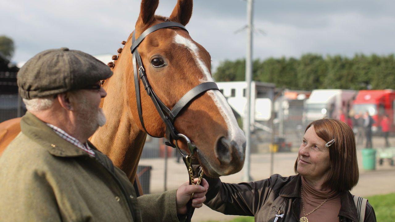 Dark Horse (2007) This film follows the true story of