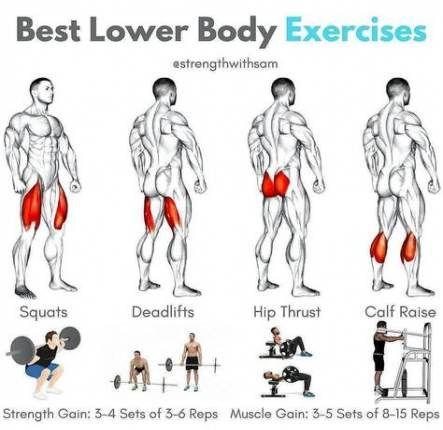 58+ trendy fitness body transformation nutrition #fitness #nutrition