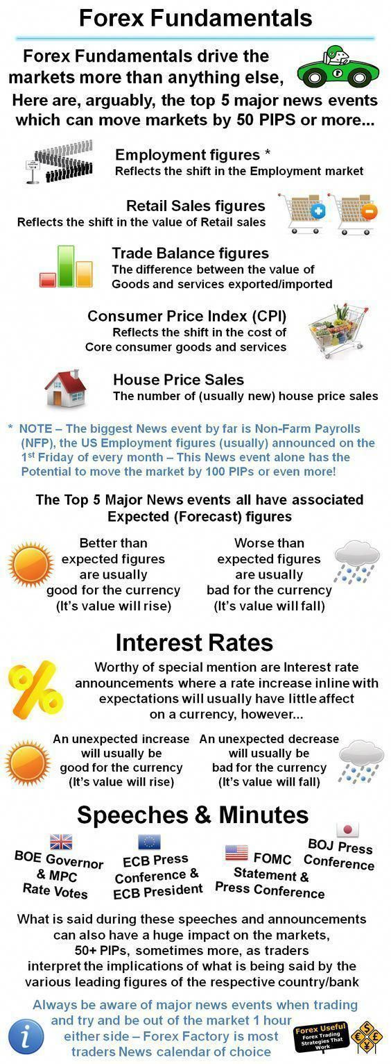 Trading Infographic Fxwm Forex Fundamentals -