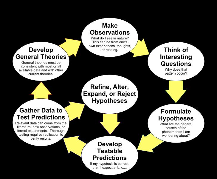 Scientific Theory vs Law Scientific method, Scientific