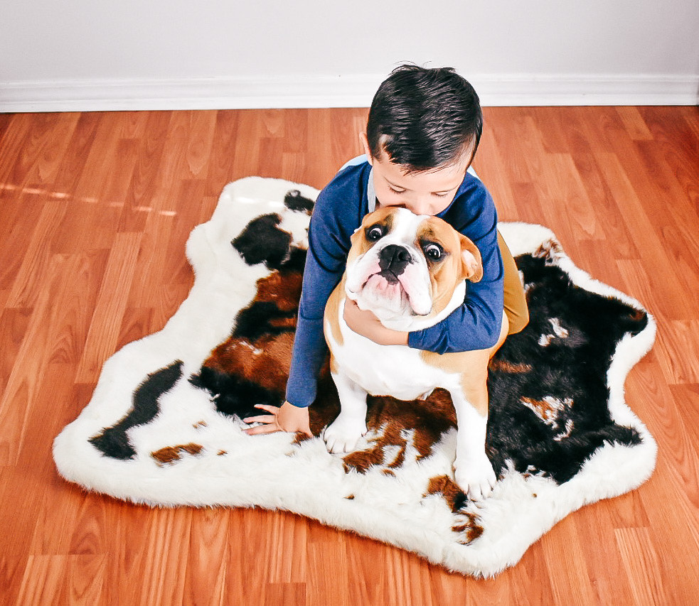 Shop the Machine Washable & Waterproof PupRug Dog Bed! in