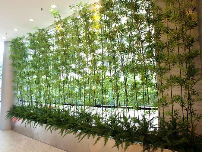 Dicas de paisagismo e jardinagem com bambu bamb - Bambu planta exterior ...