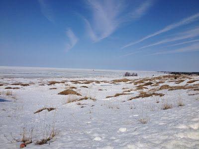 http://www.kalajoenhiekatkutsuvat.blogspot.fi #kalajoki #winter #snow #dunes