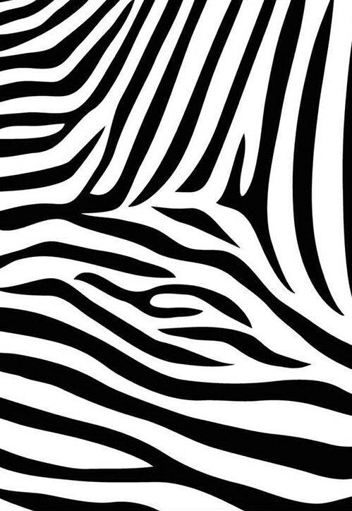 Zigzag Zebra On We Heart It Zebra Print Wallpaper Animal Print