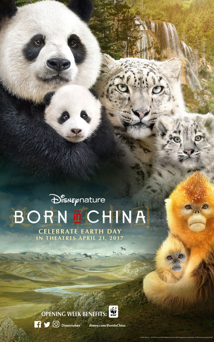 Learn About The Cast Of Disneynature Born In China Born In China Movie Born In China China Movie