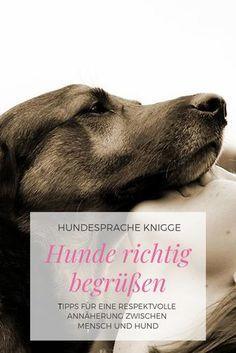Photo of Cómo ganar puntos adicionales de perros hablando respetuosamente en el idioma del perro …
