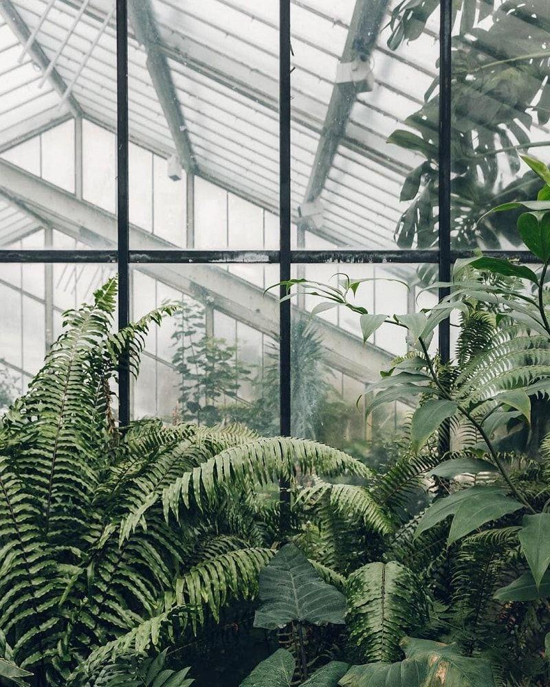 Botanical Garden Scotland Haarkon Photography • Design 400 x 300