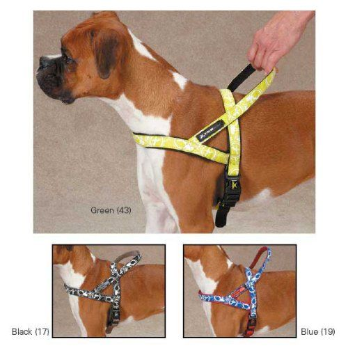 Casual Canine Xtreme Logo Dog Harness -- Quickly view this special