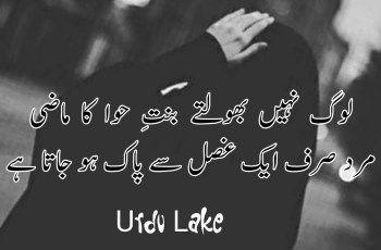 Pin on Urdu Poetry - Urdu Shayari
