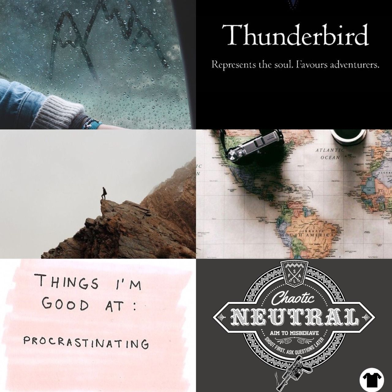 Rowena | INTP, 5w6, Thunderbird, Slytherin, Chaotic neutral