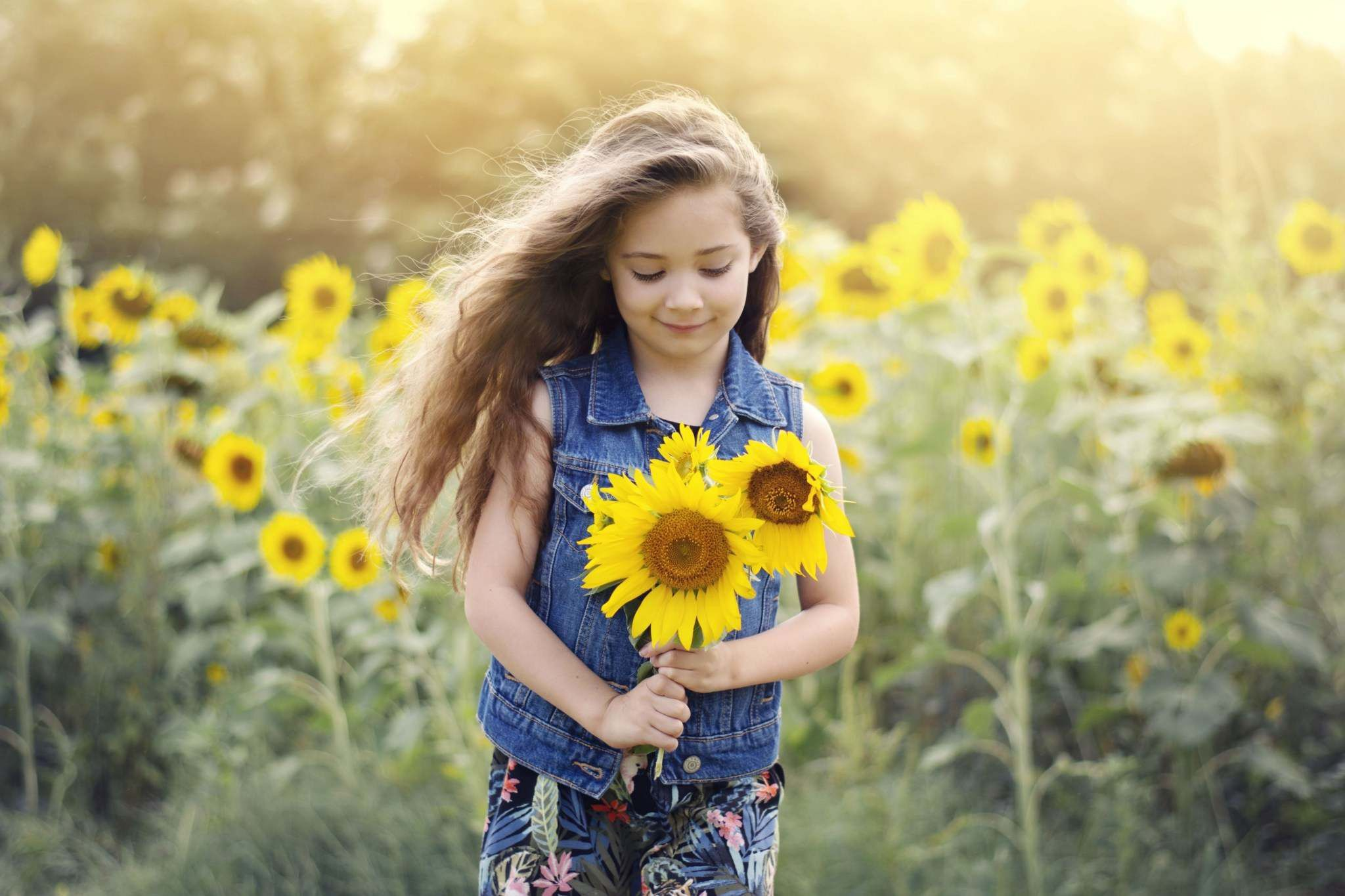 Sunflower Field Natural Light Photographers Toddler Photography 5 Year Old Photoshoot C Sunflower Photography Toddler Photoshoot Natural Light Photographer