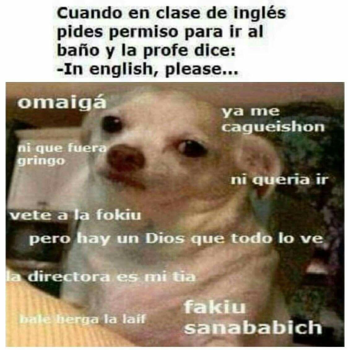 Pin De Nitza I Marin En Buen Humor Y Risas Memes Espanol Graciosos Memes Graciosos Perro Enojado