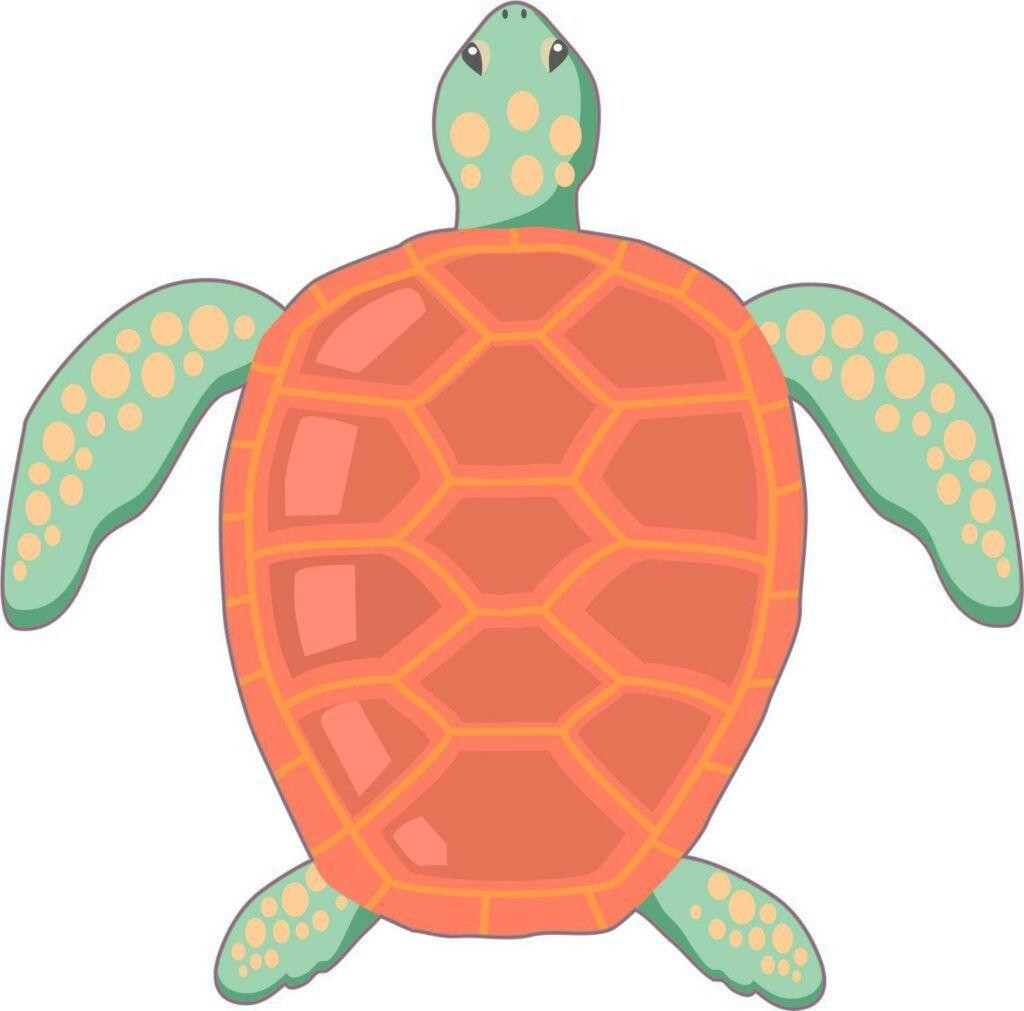 Stickertalk Sea Turtle Vinyl Sticker Green Sea Turtle [ 1011 x 1024 Pixel ]