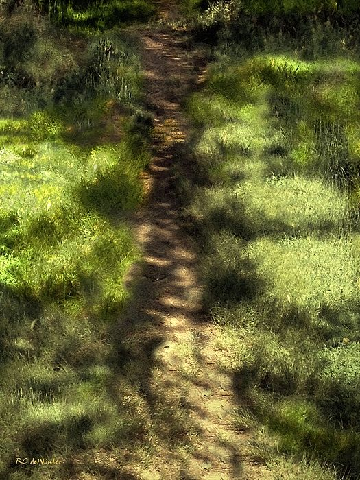 """Summer Light and Shadow"" ~ © 2016 RC deWinter ~ A impressionist view of summer sunlight and shadow play on a peaceful path through a salt marsh dusted with tiny wildflowers. ~ Fairfield, Connecticut ~ Available in a variety of media, sizes and configurations."