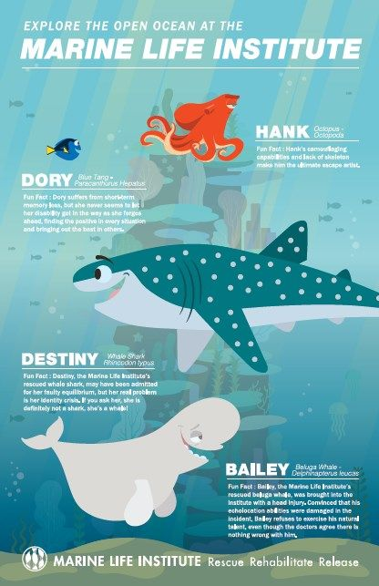 f5a2e6f287 Finding Dory Marine Life Institute Printable Posters (set of 3 ...