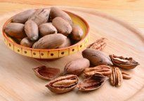Орех пекан – польза и вред вкусного орешка