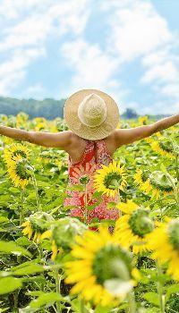 Sunflower dress girl  #sunflowerwallpaper