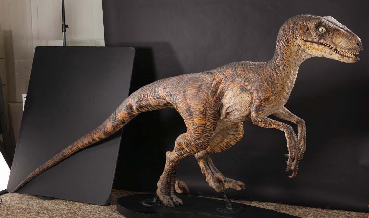 jurassic park raptor - Google Search   Raptor suit   Pinterest ...