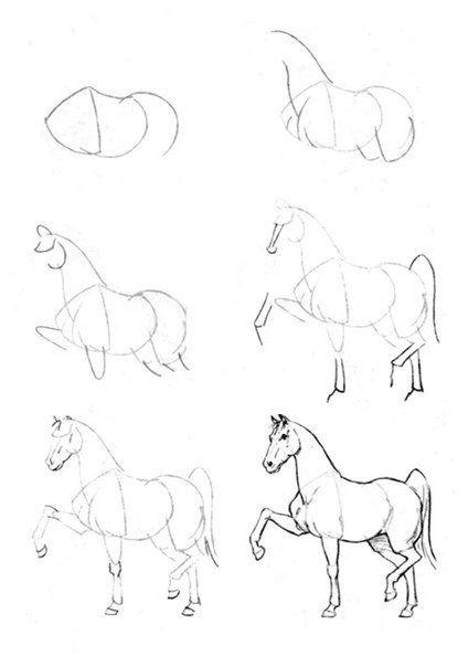 Como Aprender A Dibujar Caballos 4 Como Dibujar Un Caballo Aprender A Dibujar Animales Dibujo De Animales