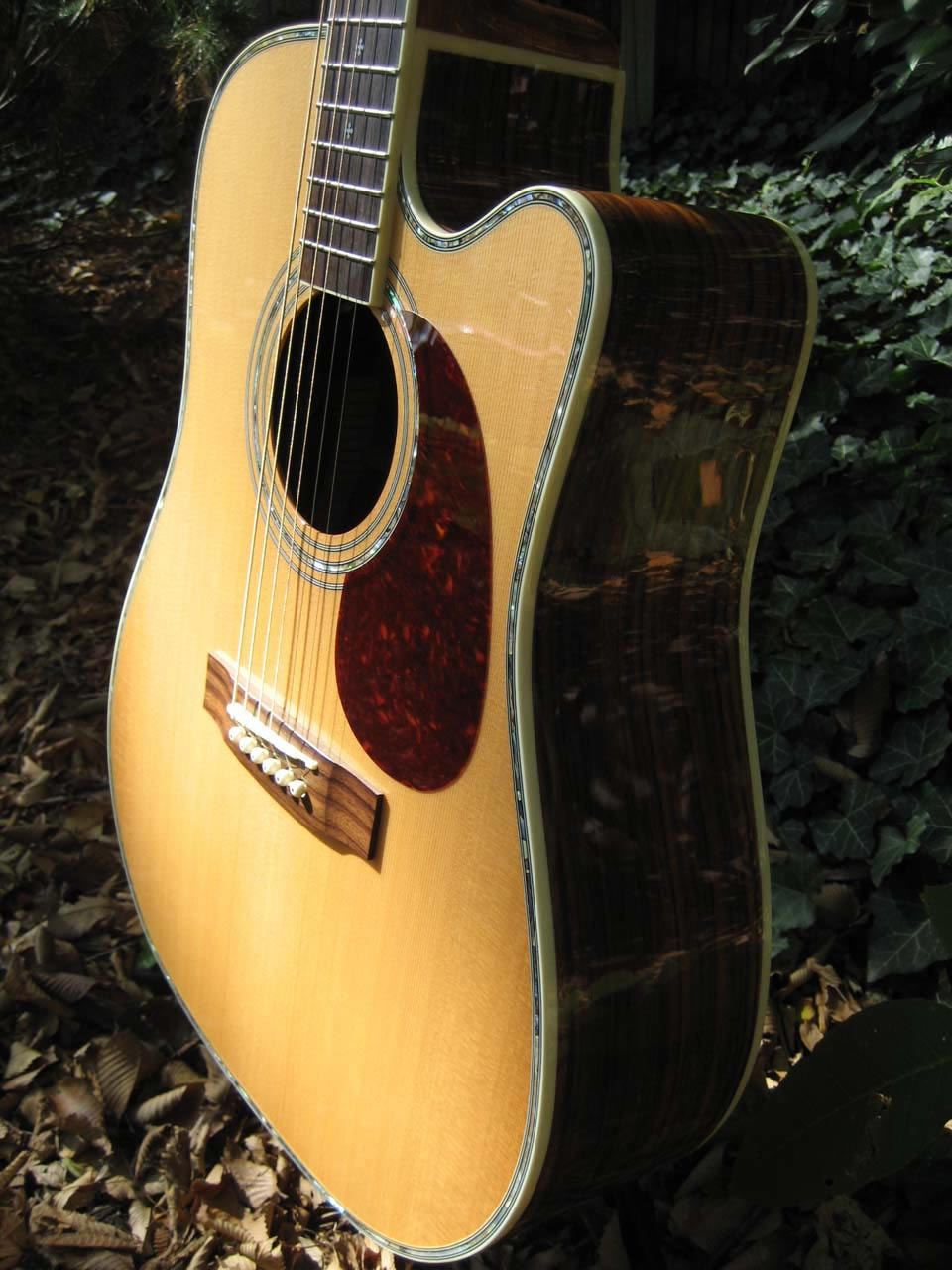 Zager Ez Play Zad80ce Acoustic Electric Pictures Guitar Acoustic Electric Acoustic